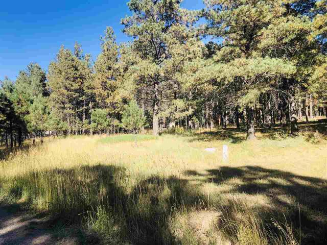 Lot 8 Pine Valley Drive, Angel Fire, NM 87710 (MLS #104250) :: The Chisum Realty Group