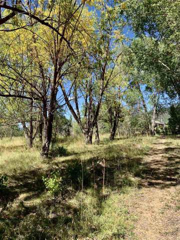 133 El Salto, Arroyo Seco, NM 87514 (MLS #104253) :: Page Sullivan Group | Coldwell Banker Mountain Properties