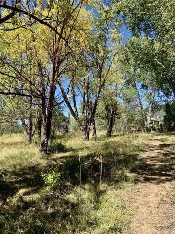 133 El Salto, Arroyo Seco, NM 87514 (MLS #104253) :: Angel Fire Real Estate & Land Co.