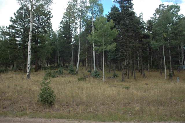 441 El Camino Real, Angel Fire, NM 87710 (MLS #104270) :: The Chisum Realty Group