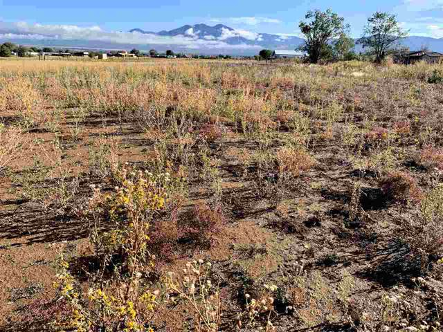 Tract D Off Highway 68, Ranchos de Taos, NM 87557 (MLS #104271) :: The Chisum Realty Group