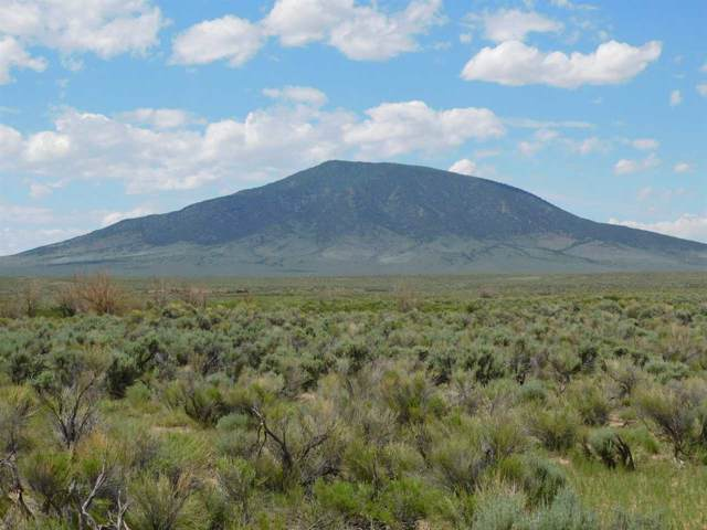 Ute Mountain Road, Questa, NM 87556 (MLS #104286) :: The Chisum Realty Group