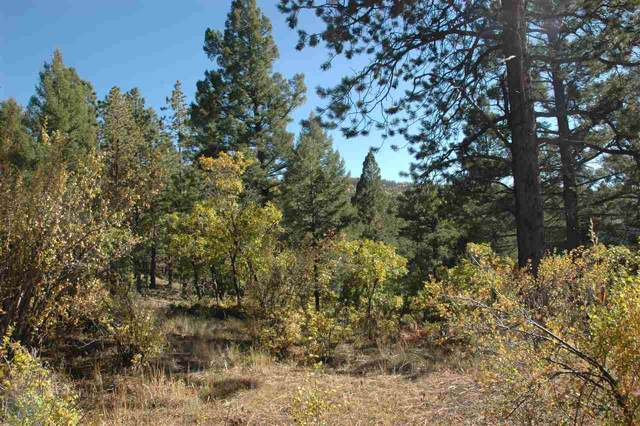 211 Steamboat Ln, Angel Fire, NM 87710 (MLS #104309) :: The Chisum Realty Group