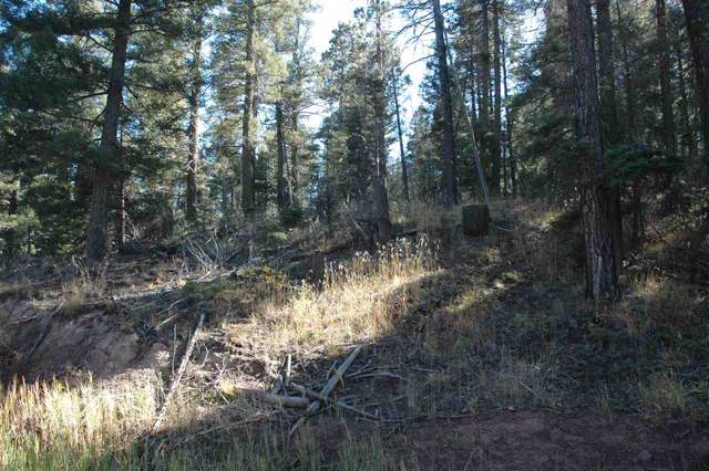 238 Summit Place, angel firfe, NM 87110 (MLS #104310) :: The Chisum Realty Group