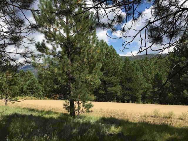 Lot 1074 Woodlands, Angel Fire, NM 87710 (MLS #104314) :: The Chisum Realty Group