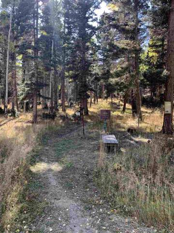 TBD Via Del Rey, Angel Fire, NM 87710 (MLS #104321) :: The Chisum Realty Group