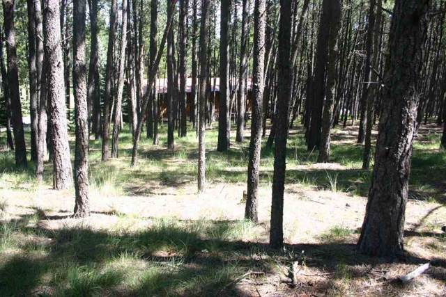 Lot 887 Calle De Luna, Angel Fire, NM 87710 (MLS #104349) :: The Chisum Realty Group