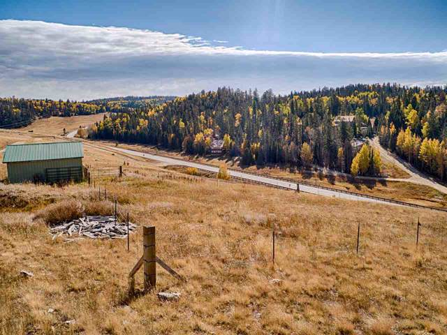 NA Hwy 38, Red River, NM 87558 (MLS #104350) :: Angel Fire Real Estate & Land Co.