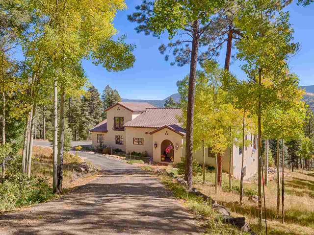 45 Peralta Dr, Angel Fire, NM 87710 (MLS #104372) :: Page Sullivan Group | Coldwell Banker Mountain Properties