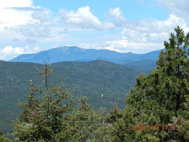 629 Panorama Way, Angel Fire, NM 87710 (MLS #104375) :: Angel Fire Real Estate & Land Co.