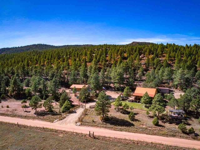 507 Cr A021, Guadalupita, NM 87722 (MLS #104380) :: Page Sullivan Group | Coldwell Banker Mountain Properties