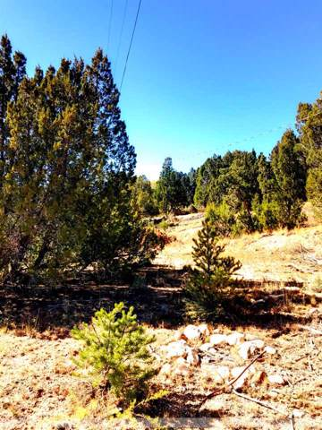 67 S Old State Rd 3, Arroyo Hondo, NM 87513 (MLS #104399) :: Page Sullivan Group | Coldwell Banker Mountain Properties
