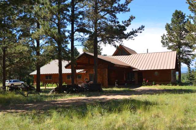 65 Garcia Park Road, Angel Fire, NM 87710 (MLS #104403) :: Page Sullivan Group | Coldwell Banker Mountain Properties