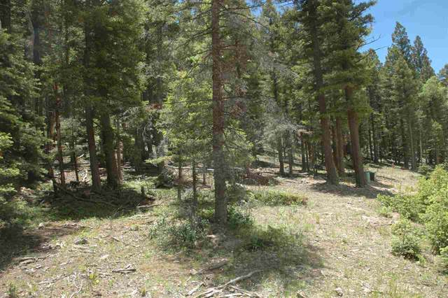 115 Taos Place, Angel Fire, NM 87710 (MLS #104425) :: Page Sullivan Group | Coldwell Banker Mountain Properties