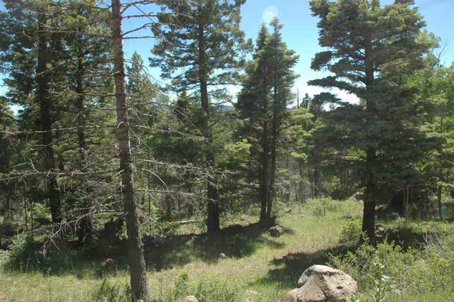 1154 Panorama Way, Angel Fire, NM 87710 (MLS #104452) :: Angel Fire Real Estate & Land Co.
