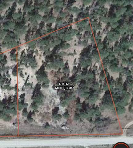 TBD Cabresto Canyon Rd, Questa, NM 87556 (MLS #104471) :: Angel Fire Real Estate & Land Co.