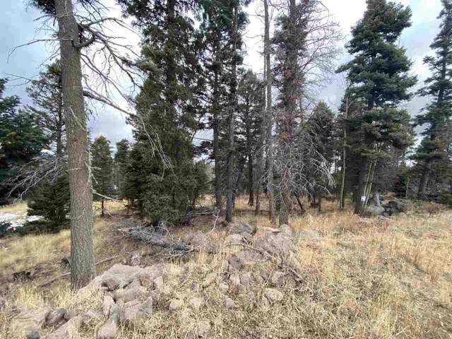 1242 El Camino Real, Angel Fire, NM 87710 (MLS #104472) :: Angel Fire Real Estate & Land Co.