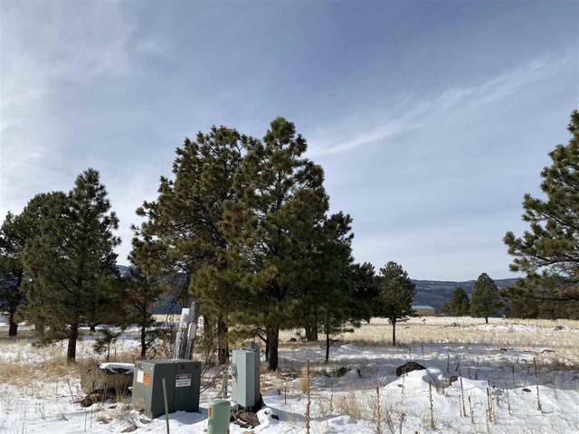 Lot 34 Camino De Norma, Angel Fire, NM 87710 (MLS #104509) :: Page Sullivan Group | Coldwell Banker Mountain Properties