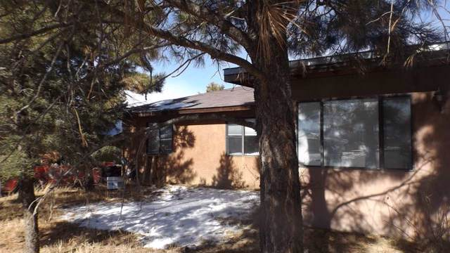 339 La Luz Drive, Taos, NM 87571 (MLS #104582) :: Page Sullivan Group | Coldwell Banker Mountain Properties