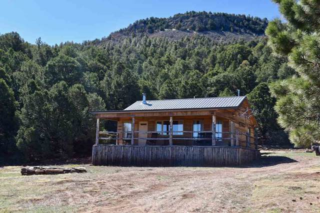 1878 State Hwy 120, Ocate, NM 87734 (MLS #104589) :: Page Sullivan Group