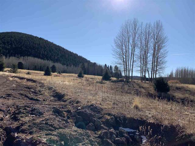 1626 Skyview Way, Angel Fire, NM 87710 (MLS #104603) :: Angel Fire Real Estate & Land Co.