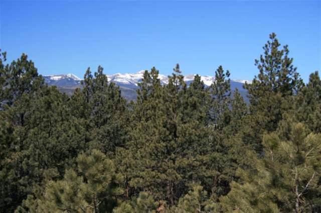17 Buckskin Road, Angel Fire, NM 87710 (MLS #104620) :: The Chisum Realty Group