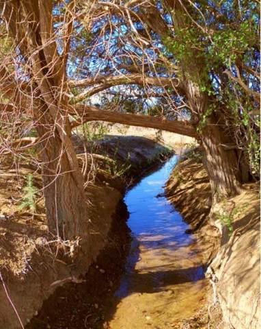 Cottontail Rd, Taos, NM 87571 (MLS #104623) :: Angel Fire Real Estate & Land Co.