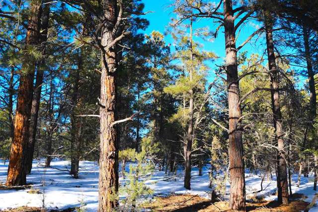Tract F Turkey Springs Rd, Valdez, NM 87580 (MLS #104626) :: Angel Fire Real Estate & Land Co.