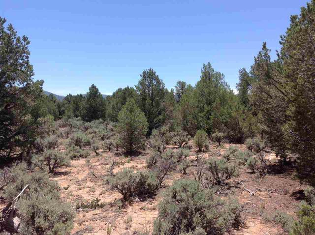 Petaca Rd, Carson, NM 87517 (MLS #104647) :: Page Sullivan Group | Coldwell Banker Mountain Properties