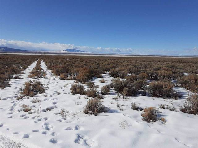 Off Calle Corta, Cerro, NM 87519 (MLS #104654) :: Angel Fire Real Estate & Land Co.