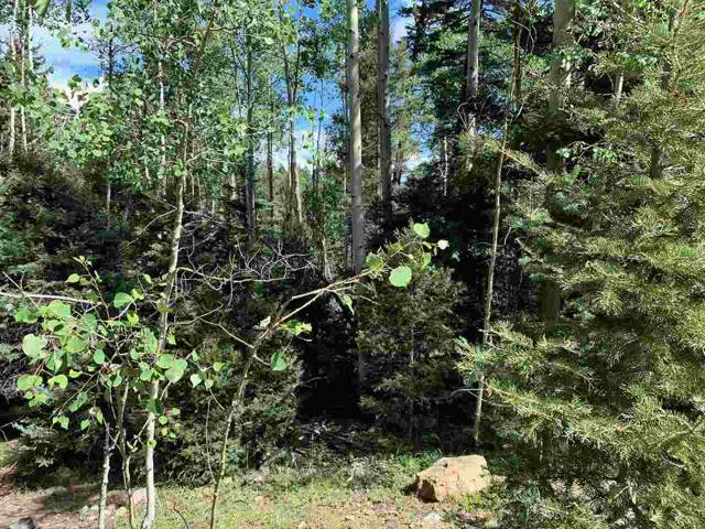 Lot 721 Santo Domingo Trail, Angel Fire, NM 87710 (MLS #104668) :: Angel Fire Real Estate & Land Co.