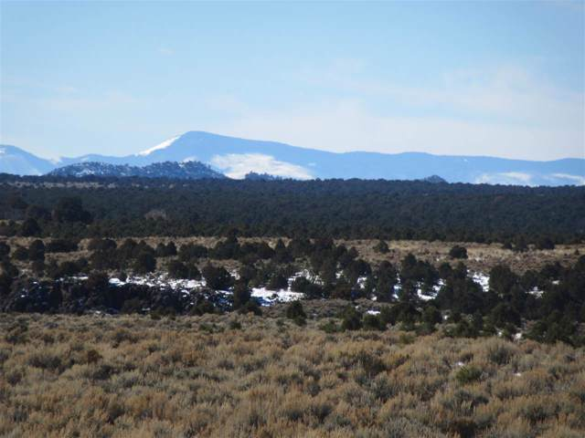 Offmatisse Road, Carson, NM 87517 (MLS #104669) :: Chisum Realty Group