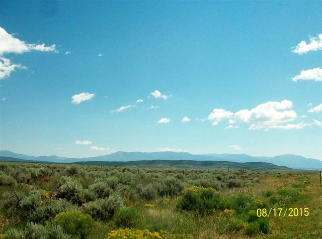 Tract B1 Highway 64, Taos, NM 87571 (MLS #104711) :: The Chisum Realty Group