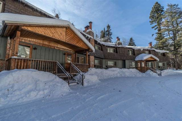 1074 State Highway 150, Taos Ski Valley, NM 87525 (MLS #104721) :: Page Sullivan Group | Coldwell Banker Mountain Properties