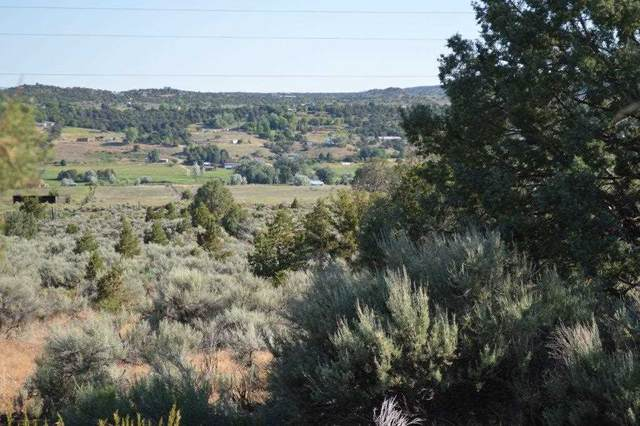 County B 006 Acequia Madre Del Llano, Arroyo Hondo, NM 87513 (MLS #104733) :: The Chisum Realty Group