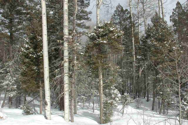 lot 99 Via De Maria, Angel Fire, NM 87710 (MLS #104734) :: Angel Fire Real Estate & Land Co.