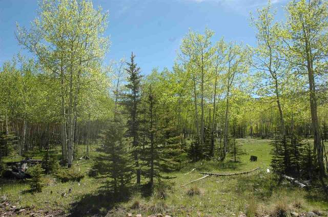lot 184 Spotted Owl, Angel Fire, NM 87710 (MLS #104736) :: Angel Fire Real Estate & Land Co.