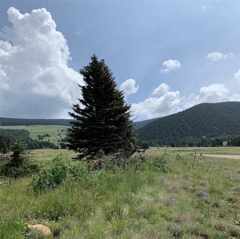 lot 77 Ute Valley Road, Angel Fire, NM 87710 (MLS #104743) :: Angel Fire Real Estate & Land Co.