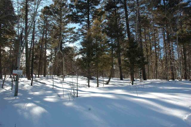 302 South Vail Overlook, Angel Fire, NM 87718 (MLS #104753) :: Angel Fire Real Estate & Land Co.