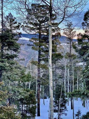 Lot 75 Via De Maria, Angel Fire, NM 87710 (MLS #104765) :: Angel Fire Real Estate & Land Co.