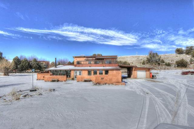 67 Lower Arroyo Hondo Road, Arroyo Hondo, NM 87513 (MLS #104779) :: Page Sullivan Group | Coldwell Banker Mountain Properties