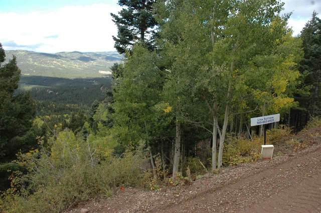 602 Panorama Way, Angel Fire, NM 87710 (MLS #104786) :: Angel Fire Real Estate & Land Co.