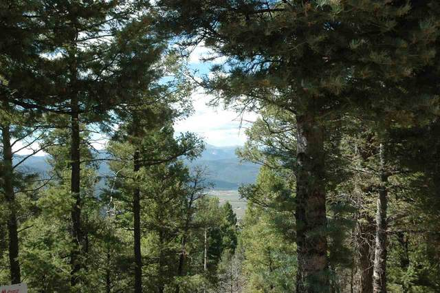 317 South Vail Overrlook, Angel Fire, NM 87710 (MLS #104787) :: The Chisum Realty Group