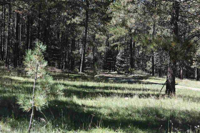 Lot 20 Corner Park Rd, Angel Fire, NM 87710 (MLS #104794) :: Angel Fire Real Estate & Land Co.