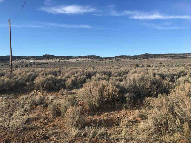 Sr 567, Carson, NM 87517 (MLS #104807) :: Chisum Realty Group