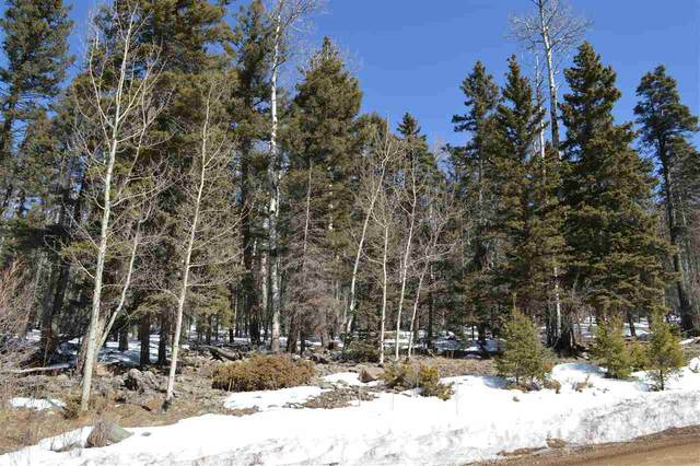 Lot 1113 El Camino Real, Angel Fire, NM 87710 (MLS #104808) :: Page Sullivan Group