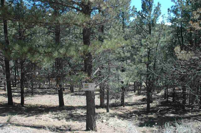 5 Alta, Angel Fire, NM 87710 (MLS #104822) :: Angel Fire Real Estate & Land Co.