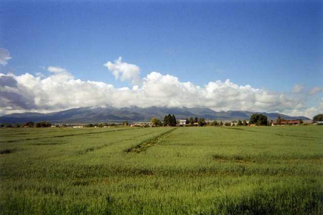 off Chamisa Rd, Ranchos de Tao, NM 87557 (MLS #104835) :: Page Sullivan Group