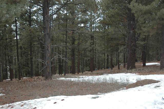 5 Pino Street, Angel Fire, NM 87718 (MLS #104862) :: Chisum Realty Group