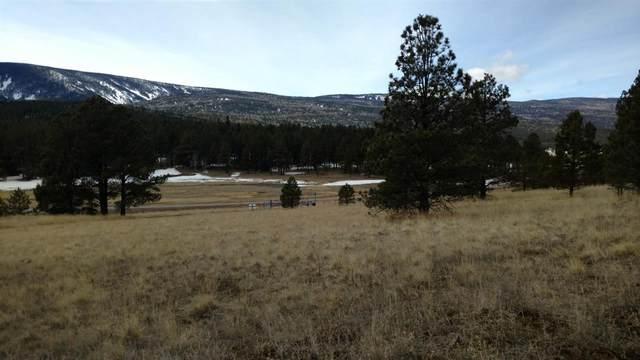 Mora Ranch Road, Angel Fire, NM 87710 (MLS #104863) :: Angel Fire Real Estate & Land Co.